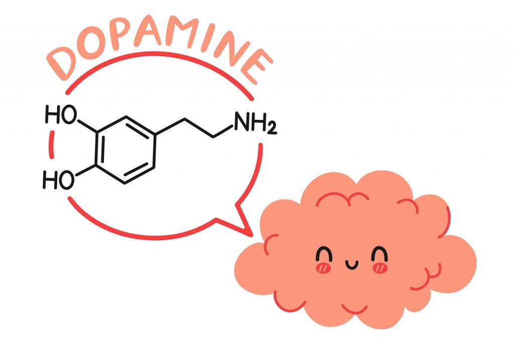 CH Salud: función motivacional de la dopamina